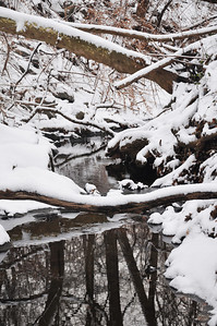 On Jan 7th, we got some snow in the Philly area, and I went hiking in Fairmont Park.