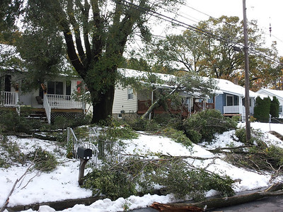 The October storm disaster, almost every street looked like this one!