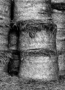 The hay barn down the street from the Alabama Farm